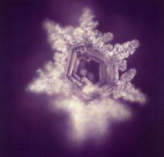 Kristallbild Wasservitalcard zur Wasservitalisierung